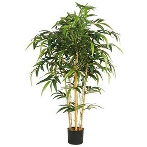 blog_7.21_Polyvore_Bamboo_Palm.png